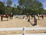 Riding Club Lesson