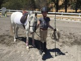 Riding Club lunging