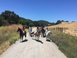 Riding Club Trail Ride